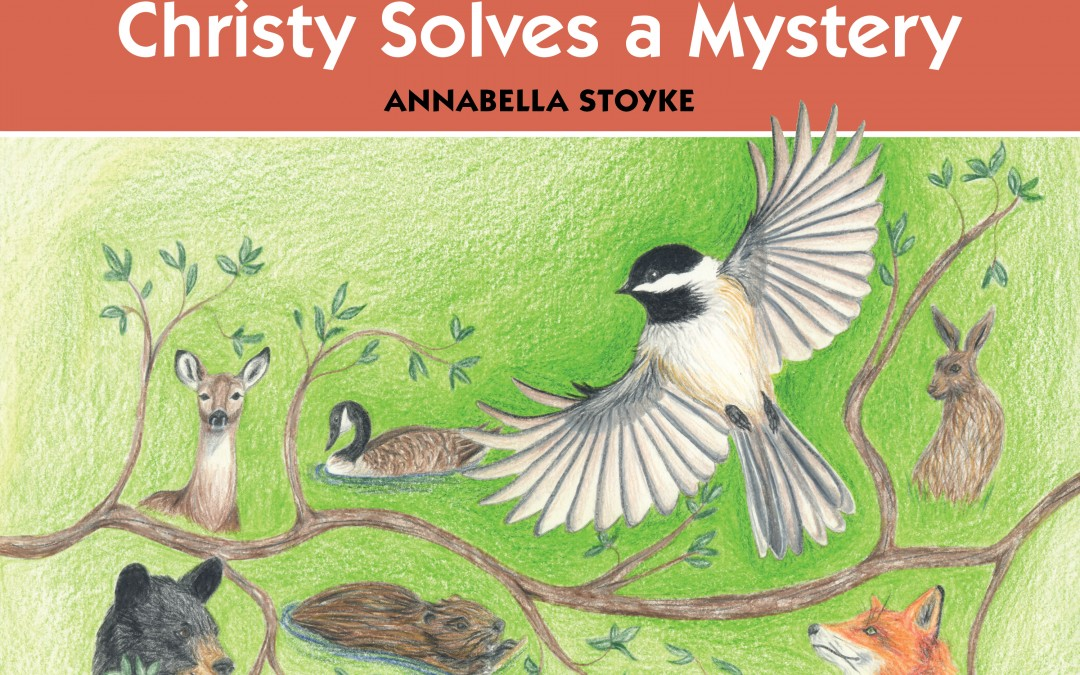 I C Publishing Features First Children's Book by Author Annabella Stoyke