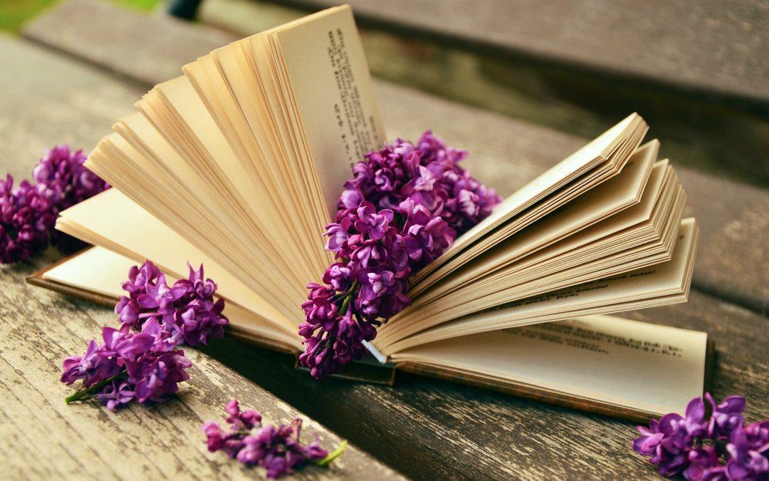 Blog Idea Turns into Wonderful Book by Dr Laura von Hagen